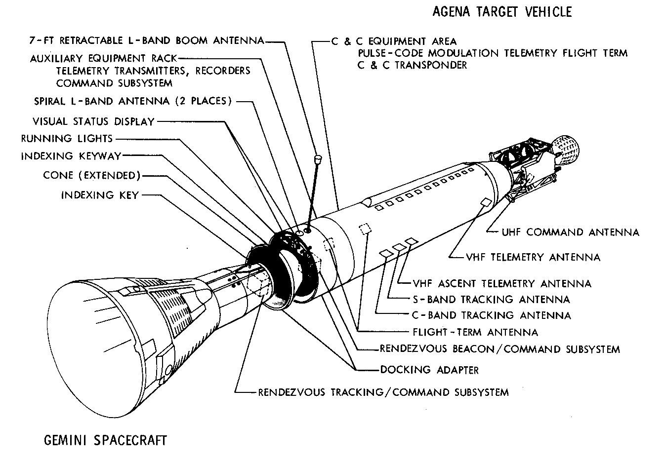 Labelled Diagram