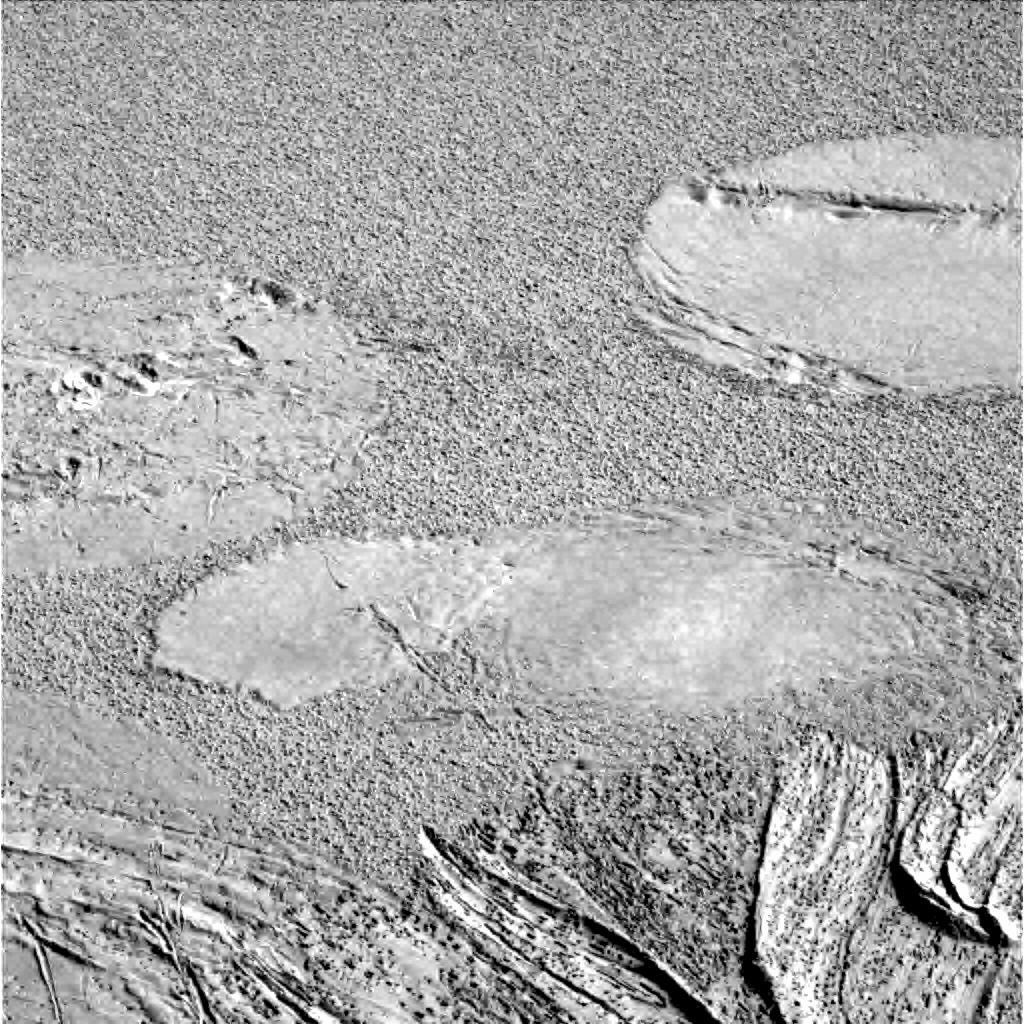 mars rover expeditions - photo #39