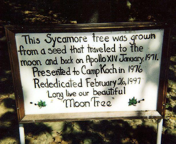 moon_tree_plaque